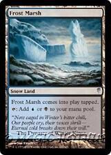FROST MARSH Coldsnap MTG Snow Land Unc