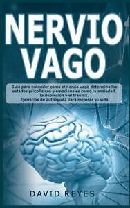 Nervio Vago, David Reyes
