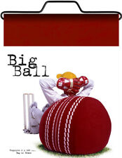 Cricket Ball adult size beanbag