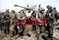 German WW 2 Panzergrenadieres Colorized Photo 8 X 10 Reproduction