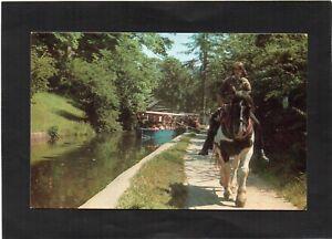 LLANGOLLEN Pleasure Boats on the Welsh Canal - Horse. Denbighshire, Wales.