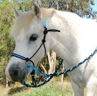 Mini/Shetland/Small pony BITLESS BRIDLE,Adjustable sidepull+Reins,Black/AQUA Blu