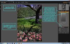 LightZone (Pro Digital RAW and JPEG Image Photo Editing Software) Windows/Mac