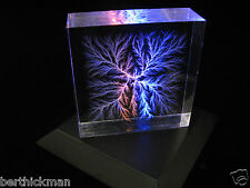 """Captured Lightning"" Lichtenberg Figure ""Beam Tree"" sculpture - Tesla inspired!"