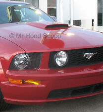PAINTED Ford Mustang GT Hood Scoop California Special w/ Honey Comb Grille HS008