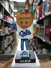 Albie Fort Worth Cats Mascot Bobble Albertsons Fort Worth Cats Bobblehead