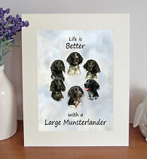 Large Munsterlander 8 x 10 Free Standing LIFE IS BETTER Picture 10x8 Dog Print
