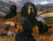 GORDON SETTER DOG FINE ART LIMITED EDITION PRINT - Composite Study John Trickett