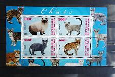 Katzen 30 cats Chats Tiere animals pets Fauna Block KB sheets postfrisch ** MNH