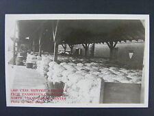 Farmersville Texas TX Onion Center Real Photo Postcard RPPC 1940s
