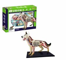 DOG ANATOMY MODEL/PUZZLE, 4D Vision Kit #26115  TEDCO SCIENCE TOYS