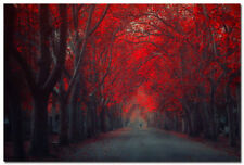 QA86 Autumn Forest Path Red Tree Nature Art Wall Poster Photo 24x36 inch