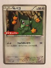 Pokemon Card / Carte Axew Promo 206/BW-P