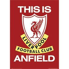 This Is Anfield Liverpool Fc Maxi Poster - Tia 44 Official Licensed Product