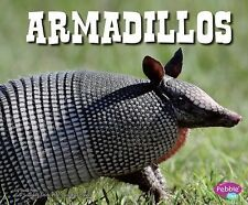 North American Animals Ser.: Armadillos by Steve Potts (2012, Paperback)
