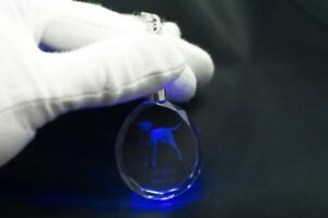 Labrador Retriever, Dog Crystal Round Keyring, High Quality, Crystal Animals AU