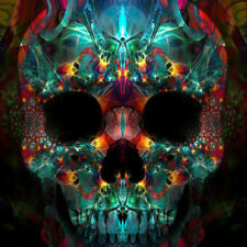 DIY 5D Diamond Painting Full drill Colorful Skull Embroidery Fashion 887Y