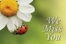We Miss You Ladybug Pack 25 (2010, Print, Other)