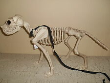 white skeleton dog on leash halloween decoration scary figure