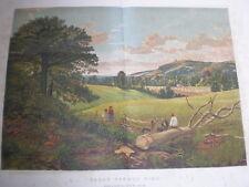 Ora di inizio estate da B W leader 1860 vecchia stampa a colori