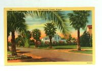 Tucson Arizona Calle Encanto Linen Vintage Postcard