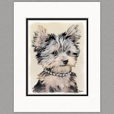 Yorkshire Terrier Yorkie Puppy Original Print 8x10 Matted to 11x14