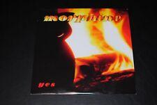 MORPHINE YES (2009) R1 10320 VINYL *ULTRASONIC *NM-