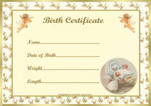 "LEMON ANGELS BIRTH CERTIFICATE/CERTIFICATES REBORN FAKE BABY approx 7x5"""