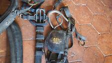 bel harnachement de cheval  de cabriolet ou de caleche  époque II empire