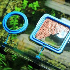 Feeding Ring Aquarium Fish Tank Station Floating Food New Square/Circle Y2J5