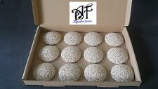 45mm Zoa coral domes frag table marine live rock rubble sps lps full box of 12