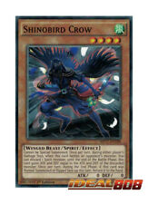 YUGIOH x 3 Shinobird Crow - MP17-EN188 - Common - 1st Edition Near Mint