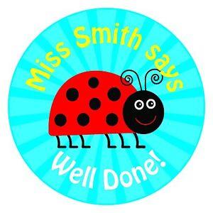 80 Personalised Teacher / Parent reward Stickers for Pupils Blue Ladybird