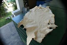 Nice Early fall Whitetail deer hide hair-on tan white soft leather buckskin cool