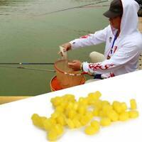 50 stücke Mais Geruch Karpfenangeln Köder Köder Zubehör Fisch Künstliche Se R6X9