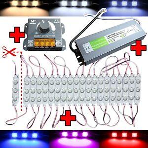LED Module+Dimmer - Warm White Cold - Power Supply 230V 12V Advertising Lighting