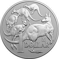 2019 $1 Mob of Roos - Beijing Expo 1oz Silver Bullion Panda Privy Mark Coin