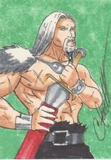 2012 Red Sonja -  Color Sketch Card by Foulkes