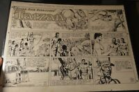 Original 1950's Tarzan Cartoon Art by John Celardo.Edgar Rice Burroughs.Signed.