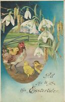 Vintage Postcard Easter Chicken Chicks White Flowers Embossed All Joy to You