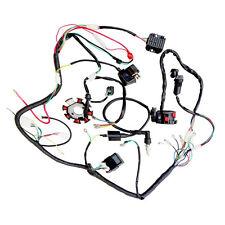 Zebra Dirt Bikes ATV QUAD 200CC 250CC Cdi Coil Z16B8 Electrics Wiring Harness