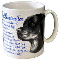 Rottweiler - Ceramic Coffee Mug - Dog Origins Breed