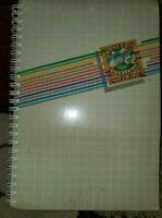 Apple Writer ][ Operating Manual 1981 + Writer & backup Floppy Disks...USED
