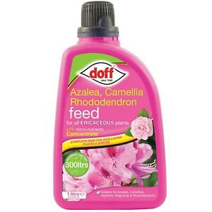 Doff Ericaceous Plant Container & Basket Feed Concentrate, For Healthy Growth 1L