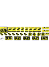 Graduation YELLOW Grad Mega Value 30 pcs CUTOUTS Party Supply 5-5D
