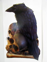 Halloween Decoration Prop Peel and Place Spooky Raven and Skulls Sticker
