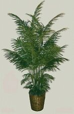 One 8' Artificial Ten Trunk Areca Palm Tree In Basket Patio Bush Flower Plant