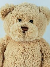 Gund Plush Bear Get Well Soon Reg. No. Pa-14386 Incredibly Soft