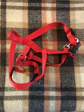 halti head collar size 3