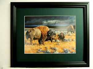 """BUFFALO PICTURE WESTERN INDIAN """"RESTLESS"""" NANCY GLAZIER MATTED FRAMED 16X13"""